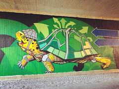 Streetart under the bridge @ Oude Baan Leuven (Kristel Van Loock) Tags: streetart mural streetartleuven leuven louvain lovanio lovaina löwen atleuven seemyleuven visitleuven leveninleuven drieduizend iloveleuven loveleuven leuvenlove oudebaanleuven underthebridge onderdebrug oudebaan artwork tomcech tomcechartwork muralart leuveninbeeld vlaamsbrabant flanders fiandre flandre flemishbrabant brabantflamand brabantefiammingo visitflemishbrabant visitvlaamsbrabant vlaanderen visitbelgium streetartbelgium colorfulstreetart colorful painting streetartisttomcech turtle schildpad beautifulstreetart s komopvoorjewijk stadleuven opmaatvanonzestraat brug bridge