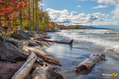 """""""Autumn Driftwood"""" Porcupine Mountians State Park (Michigan Nut) Tags: lakesuperior porcupinemountains nature driftwood beach upperpeninsula greatlakes scenic sand autumn fall landscape midwest michigan"""