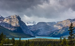Rugged mountains, turquoise lake (Photosuze) Tags: landscape canada canadianrockies banffnationalpark mountains lakes snow clouds sky water trees pines
