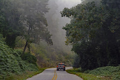Foggy Mountain Road (mevans4272) Tags: fog road truck mountains fall nc gorgeouslonelyroad