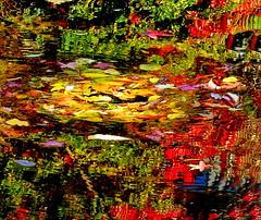 Water Art: Nature's own incredible Autumn abstract (peggyhr) Tags: blue autumn red orange white canada green leaves yellow vancouver reflections pond bc grasses shrubs peggyhr dsc09040ab infinitexposurel1 frameit~level01~ aoi artofimages~aoil1~ visionaryartsgallerylevel1 friends farm carolinas carolinasfarmfriends rainbowofnaturelevel1red thelooklevel1red dslrautofocuslevel1 thegalaxystars1 thelooklevel2yellow dslrautofocuslevel2 dslrautofocuslevel3 thelooklevel3orange thelooklevel4purple thelooklevel5green exquisiteart50faveslevel1 thelooklevel6blue thelooklevel7white