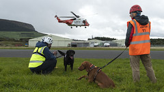 K9 Search & Rescue Northern Ireland