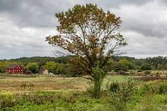 Gettysburg Fields (Jill Clardy) Tags: gettysburg location northamerica pennsylvania roadscholar unitedstates civil war battlefield fields land park 201909139l8a9743 explore explored