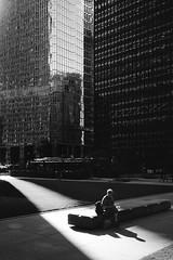 a bright idea (mikeciv) Tags: film fujineopanacros leicam6 street summicronm35mmf2iv solitude quiet books toronto