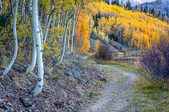 Peak Around the Bend (Kirk Lougheed) Tags: colorado crystallake ouraycounty populustremuloides sanjuanmountains usa uncompahgrenationalforest unitedstates aspen lake landscape outdoor path trail tree water