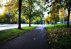 IMG_20191007_174316 (www.ilkkajukarainen.fi) Tags: autumn syksy threes ouut happy life line visit espoo suvela travel travelling suomi finland finlande eu europa scandinavia