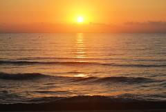 Sunrise - Amanecer (En memoria de Zarpazos, mi valiente y mimoso tigre) Tags: beach playa spiaggia mar sea mare sun sol sole seascape sunrise amanecer alba campello alicante spain nikon red sky skyfire skyscape