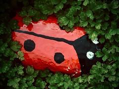 lady-bird (delnaet) Tags: ladybird lieveheersbeestje zuiderbegraafplaats gent gand ghent graf tombe graveyard rotrossorougerood