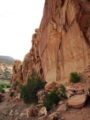 Glen Canyon Sandstone (Upper Triassic to Lower Jurassic; Dinosaur National Monument, Utah, USA) 18 (James St. John) Tags: glen canyon sandstone dinosaur national monument utah navajo nugget quartzose sandstones triassic jurassic