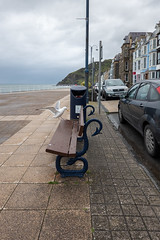 Here Goes (Jocey K) Tags: triptoukanderoupe2019 june uk wales aberystwyth sea seaside cars evening beach seat seagull birds bin rubbishbin sky clouds building architecture hills