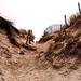 Après les dunes à la Torche. Finistère.