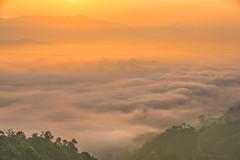 _Y2U4412-16.0919.Bản Dọi.Tân Lập.Mộc Châu.Sơn La (hoanglongphoto) Tags: asia asian vietnam northvietnam northernvietnam northwestvietnam landscape scenery vietnamlandscape vietnamscenery mocchaulandscape morning clouds valley mist mountain flanksmountain hdr earlyfrost earlymorningfog canon canoneos1dx canonef70200mmf28lisiiusm morningdew tâybắc phongcảnh phongcảnhmộcchâu mâymộcchâu thunglũngmâymộcchâu mây buổisáng sươngmù sươngsớm núi sườnnúi cloudvalley theforest rừng nature thiênnhiên thiênnhiênmộcchâu sơnla mộcchâu tânlập bảndọi morningclouds mâybuổisáng minimalisme