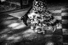 Pas de deux sevillan (vedebe) Tags: danse danseurs pied pieds chaussures dance andalousie andalucia flamenco seville espagne rue street urbain urban city ville noiretblanc netb nb bw monochrome art artiste