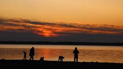 Sunset (buidl-lemmy) Tags: jeziorsko stausee artificiallake sonnenuntergang sunset silhouette orange glowing evening abend poland polen polska clouds wolken