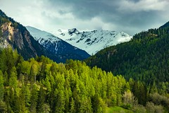 Swiss mountains in spring (FVillalpando) Tags: glacierexpress suiza mountains spring snow forest clouds switzerland ngysa ngysaex