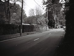 The Crescent road (photo 6) (Matthew Paul Argall) Tags: jcpenneyelectronicstrobepocketcamera 110 110film subminiaturefilm lomographyfilm 100isofilm blackandwhite blackandwhitefilm road street