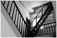 . (Out to Lunch) Tags: house details saigon ho chi minh city vietnam blackwhite monochrome staircase light lines ceiling architecture urban fuji xh1 xf281655rlmwr happyplanet asiafavorites