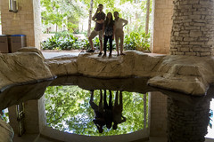 Reflection in the San Antonio Riverwalk Grotto (aaronrhawkins) Tags: reflection pool water calm riverwalk sanantonio grotto pose erik kalliyan gracie shadow backlit aaronhawkins