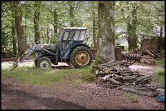 11th of May 2019 (Paul of Congleton) Tags: may 2019 lakedistrict cumbria england uk tractor clearing woods rural trees olympus om4ti 35mm colour negative film
