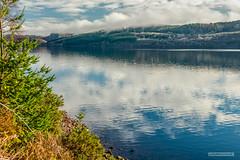 "Across Loch Ness towards Inverfarigaig. (Scotland by NJC.) Tags: lakes lochs reservoirs waters meres tarns ponds pool lagoon lago 湖 jezero sø meer järvi lac see λίμνη 호수 innsjø jezioro озеро hill تَلّ colina 小山 brdo kopec bakke forhøjning landskabet heuvel mäki colline hügel λόφοσ collina 丘 언덕 ås wzgórze deal холм backe เขาเตี้ยๆ tepe coğrafya пагорб đồi forest woodland plantation trees grove ""temperate rainforest"" غَابَة floresta 森林 ""bosque grande"" metsä forêt wald δάσοσ foresta skog las pădure lochness inverfarigaig scotland"
