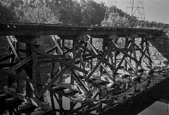 Elkhorn Trestle (Neil Kesterson) Tags: 35mm bw canon canonet canonet28 derevpan200 fpp kentucky analog blackandwhite f28 film filmcamera filmisnotdead filmsnotdead rangefinder