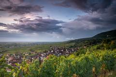 Gueberschwihr - Alsace (imagene74) Tags: alsace bois forêt paysage leverdujour nuages groupenuagesetciel