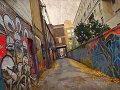 Graffiti Alley (scilit) Tags: graffiti graffitialley toronto downtown color colorful vivid buildings road path walkway attraction art drawings texture lines shapes leaves tree autumn person doorway arch perspective angles urban city artdigital daarklands sincity architecture fence structures