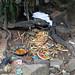 In the Osun-Osogbo Sacred Grove -  an Orisha shrine