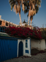 Morocco in September (everythingissea) Tags: morocco travel nature people portrait landscape sky blue ocean samyang surfing beach moon