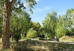 Una mañana de octubre (kirru11) Tags: paseo campo camino árboles piedras persona hombre cielo quel larioja españa kirru11 anaechebarria canonpowershot