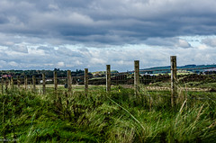 Post After Post!! (BGDL) Tags: lightroomcc nikkor55200mmf4556g bgdl landscape nikond7000 fenceposts prestwick gatesandfences week41 weeklytheme flickrlounge
