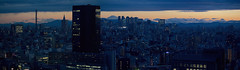 Tokyo 4544 (tokyoform) Tags: tokyo tokio 東京 日本 tokyoform chrisjongkind japan city 都市 ciudad cidade ville stadt urban cityscape skyline 都市の景観 都市景観 街並み stadtbild paesaggiourbano paisagemurbana paisajeurbano paysageurbain shinjuku 新宿 富士山 fujisan fujiyama mountfuji mtfuji 日没 sunset