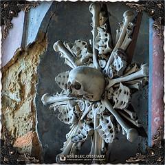 """We all die. The goal isn't to live forever, the goal is to create something that will."" -Chuck Palahniuk . ☩💀 Click link in BIO for our current Kickstarter. 💀☩ ☩💀 Mailing list: https://ift.tt/2lTYHHU 💀☩ . . #SedlecOssuaryProject # (Sedlec Ossuary Project) Tags: sedlecossuaryproject sedlec ossuary project sedlecossuary kostnice kutnahora kutna hora prague czechrepublic czech republic czechia churchofbones church bones skeleton skulls humanbones human mementomori memento mori creepy travel macabre death dark historical architecture historicpreservation historic preservation landmark explore unusual mechanicalwhispers mechanical whispers instagram ifttt"