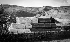Harwood . (wayman2011) Tags: 7artisans55mmf14lightroom5 colinhart fujifilmxe2s wayman2011 bwlandscapes mono rural farms haybales pennines dales teesdale upperteesdale harwood countydurham uk