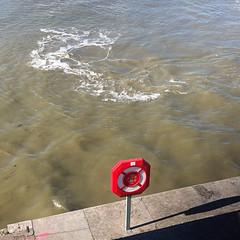 #drowning #antwerp (jan_ssen) Tags: drowning antwerp
