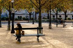 A quiet moment in Paris (pa_cosgrove) Tags: paris public square park parkbench trees man woman foliage fall peaceful quiet sony a73