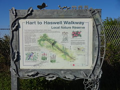 Railway Walks (ee20213) Tags: durhamcoastline disusedrailways hartlepool abandonedrailways cemeterynorthjunction hartlepooldockrailway nationalcyclenetwork14