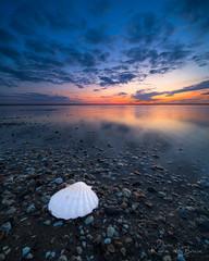 SeaShell! (karindebruin) Tags: maasvlakte zonsondergang beach dunes reflectie reflection sand sea strand sunset water windstil zand zee schelp seashell