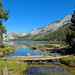 Tenaya Lake Outlet into Tenaya Creek, Yosemite 10-19