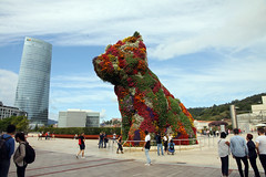 Puppy, Bilbao (by_irma) Tags: puppy koons bilbao spain spanje bloemen flowers dog hond art guggenheim
