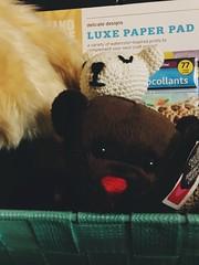 HTBT (f l a m i n g o) Tags: cute teddybear face explore