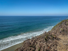 IMG_4738 (Laurie2123) Tags: encinitas laurieabbotthartphotography laurietakespics laurieturner laurieturnerphotography laurie2123 odc odc2019 ourdailychallenge beach iphone iphone11promax