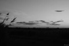 La nature des choses (Franck's) Tags: blackwhite noiretblanc landscape paysage ciel sky nuages clouds sunrise leverdesoleil ombre shadow