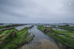Green Ocean ... (Francis Minini (On-Off)) Tags: seascapes