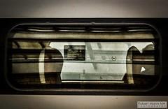 CreweRailStation2019.10.03-41 (Robert Mann MA Photography) Tags: crewerailstation cheshire train trains railway railways station stations 2019 autumn 3rdoctober2019 northern class195 civity class319 virgintrains class390 pendolino class221 supervoyager londonnorthwesternrailway class350 desiro transportforwales tfwrail walesandborders class150 sprinter