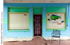 Mahi Mahi LLC Yamaha (jwvraets) Tags: florida fernadina fernandinabeach business mahimahi yamaha closed colours pastels blue green stripe chair opensource rawtherapee gimp nikon d7100 afsdxnikkor18105mmvr