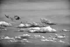 Clouds (jaume zamorano) Tags: skyline cloud blackandwhite blancoynegro blackwhite blackandwhitephoto blackandwhitephotography bw d5500 lleida monochrome monocromo nikon noiretblanc nikonistas nube pov street streetphotography streetphoto streetphotoblackandwhite streetphotograph view