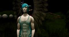 Otherside (Shee's Wrath) Tags: sl secondlife shee banashee fae faery fairy male nature art beauty