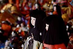 Old Doll Appreciation Day at Meiji Jingu (Blandrea) Tags: tokyo meijijingu yoyogipark japan shrine shinto shoken 明治神宮 dolls old appreciation thankyou