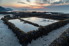 Cancale (allcats35) Tags: cancale huitres oysters sunrise reflets reflection leverdesoleil bretagne brittany canon algue seaweed landscape paysages